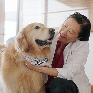Picture of a veterinarian and dog